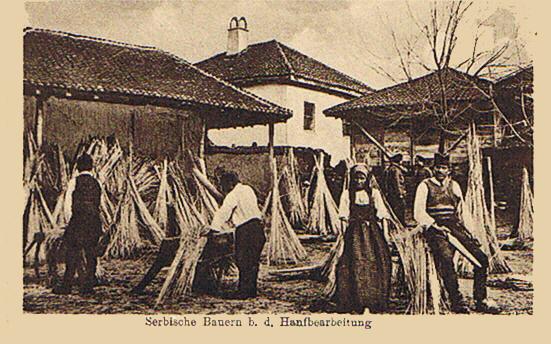Postkarte von 1917